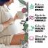 Tisane Feuille de Framboisier Bio 200g - Infusion Fin de Grossesse, Tisane Allaitement, Règles douloureuses - Format Cure Bien-être
